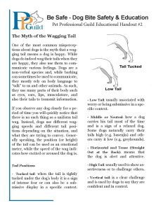 Handout 2 Myth of Tail Waggin-page-001